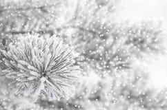 Winter-Hintergrund Lizenzfreies Stockbild