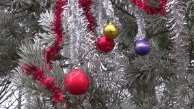 Winter hoarfrost and Christmas New Year toys on pine tree branch stock video