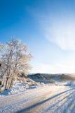 Winter holiday! Royalty Free Stock Photo