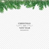 Winter holiday background. Border with Christmas tree branch isolated on transparent background. He is used for New year. Cards, banners, headers, party posters royalty free illustration