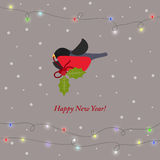 Winter holiday card with bullfinches and branch of Holy Royalty Free Stock Images