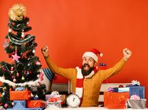 Winter holiday and celebration concept. Santa presents decorated Christmas tree. Man with beard and happy face gets ready to celebrate New Year. Santa Claus royalty free stock images