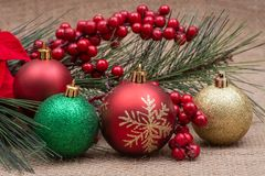 Winter holiday decoration: Blooming Holiday Red Poinsettia, Pine, Berry bush and Christmas tree balls on burlap. Background stock photo