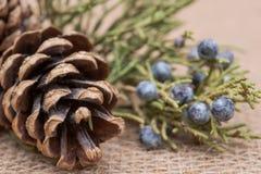 Winter holiday decoration: juniper twig and cones on burlap stock photos