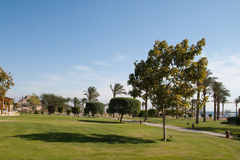 Winter holiday in Egypt, Taba. Royalty Free Stock Photography
