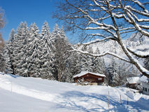 Winter holiday house. In swiss alps Royalty Free Stock Images