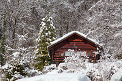 Winter holiday house. In swiss alps Royalty Free Stock Photo