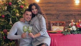 Winter holiday, portrait of couple with wineglasses looks at camera on background of fir tree. Winter holiday, portrait of cute couple with wineglasses looks at stock video footage