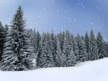 Winter Holiday Theme background. Magic Winter holiday theme with snowflakes and pine forest Stock Images