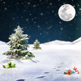 Winter Holiday Theme background Royalty Free Stock Photos