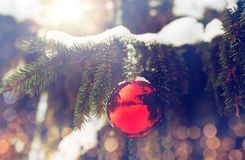 Red christmas ball on fir tree branch with snow Stock Photo