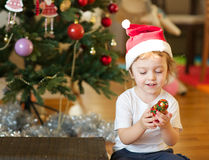 Winter holidays at home Royalty Free Stock Photo