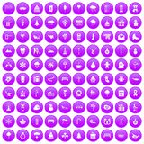 100 winter holidays icons set purple. 100 winter holidays icons set in purple circle isolated on white vector illustration Stock Photos