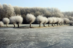 Winter in Holland Royalty Free Stock Photos