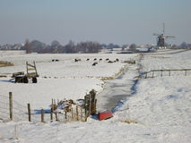Winter in Holland Stock Photography