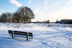 Winter in Holland. A beautiful winter day in Holland royalty free stock images
