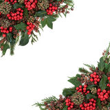 Winter Holly Border Stock Photography