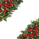 Winter Holly Border Stock Photo