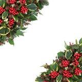 Winter Holly Border Stock Photo