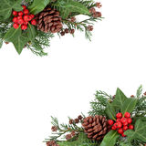 Winter Holly and Flora Border Stock Photo