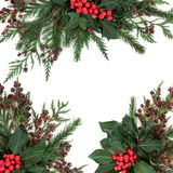 Winter Holly and Greenery Border Stock Image