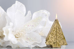 Winter holyday decoration. Winter holiday decoration: Christmas-tree shaped candle accompanied by snow-white flower Stock Images