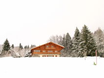 Winter Home. With Snow and Pine Trees Stock Image