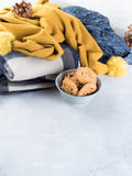 Winter Home relax with plaid and cookies. Vertical Stock Images