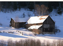 Winter homestead. Old homestead barns in a wintery landscape stock photography
