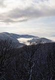 Winter horizon. Stock Image
