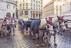 Winter horse carriages in the center of Vienna Royalty Free Stock Photography