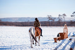 Winter horse rider Stock Photos