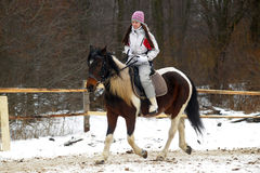 Winter horse rider Royalty Free Stock Photography
