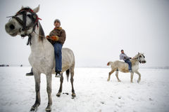 Winter horse riding Stock Image