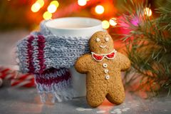 Winter hot drink christmas background.Holiday cocoa cup home gingerbread cookie on a table. Xmas beverages concept.New year cocoa. Advertisement design Royalty Free Stock Photos