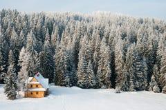 Winter house Stock Image