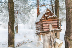 Winter house for birds on the tree. House with food for the birds hanging on the tree stock photos