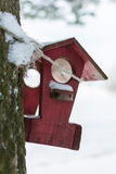 Winter house for birds on the tree. House with food for the birds hanging on the tree royalty free stock photography