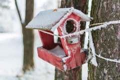 Winter house for birds on the tree. House with food for the birds hanging on the tree royalty free stock images