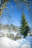 Winter house in fir-tree forest Stock Photos