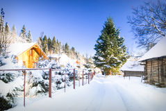 Winter house in forest Royalty Free Stock Images