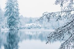 Winter house in snowy forest on lake. stock photos