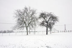 Winter in Hungary Stock Photography