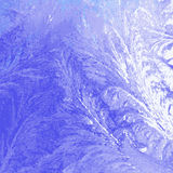 Winter ice background Stock Image