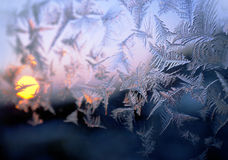 Winter ice background Stock Image
