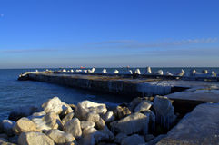 Winter ice breakwater Royalty Free Stock Photo
