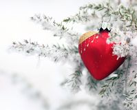 Winter ice heart. Christmas tree in nature in snow with heart stock images