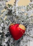 Winter ice heart. Christmas tree in nature in snow with heart royalty free stock image