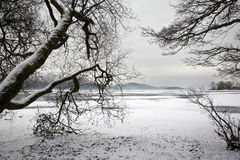 Winter ice - Lake District - England Royalty Free Stock Photography