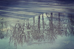 Winter, ice melting on lake surface with landscape Royalty Free Stock Photos